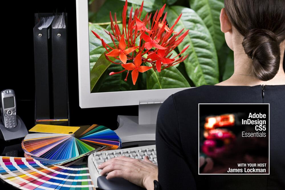 Adobe Indesign Cs5 Essentials Study 365